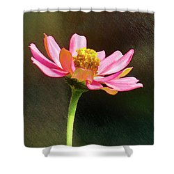 Sunlit Uplifting Beauty Shower Curtain
