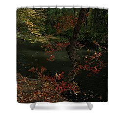 Sunlite Riverview Shower Curtain