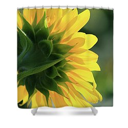 Sunlite Sunflower Shower Curtain