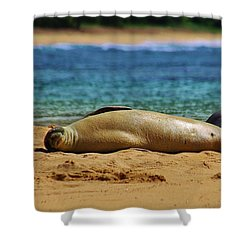 Sunning On The Beach In Hawaii Shower Curtain