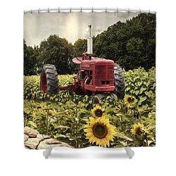 Shower Curtain featuring the photograph Sunny Acres by Robin-Lee Vieira