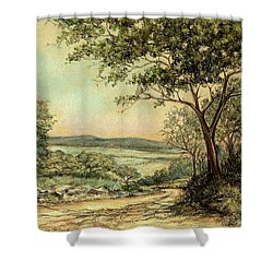 Shower Curtain featuring the painting Sunny Bushveld by Heidi Kriel