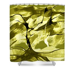 Sunny Day Shower Curtain by Asok Mukhopadhyay