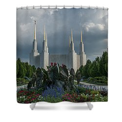 Sunny Day With Clouds Shower Curtain