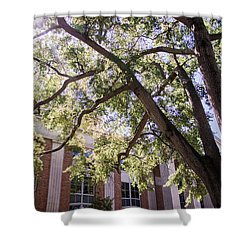 Shower Curtain featuring the photograph Sunny Days At Uga by Parker Cunningham