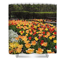 Shower Curtain featuring the photograph Sunny Days by Teresa Schomig