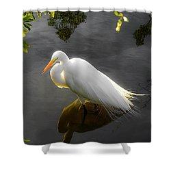 Sunny Egret Shower Curtain