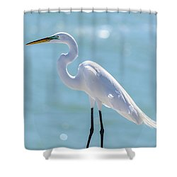 Shower Curtain featuring the photograph Sunny Egret by Steven Sparks