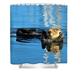 Sunny Faced Sea Otter Shower Curtain