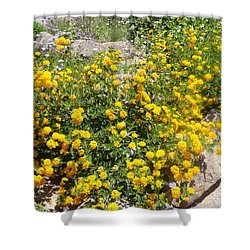 Sunny Garden Shower Curtain