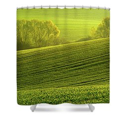 Shower Curtain featuring the photograph Sunny Green by Jenny Rainbow