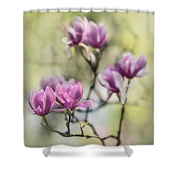 Sunny Impression With Pink Magnolias Shower Curtain