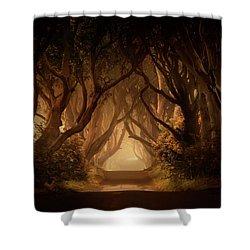 Sunny Morning In Dark Hedges Shower Curtain