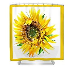 Sunny Shower Curtain by Now