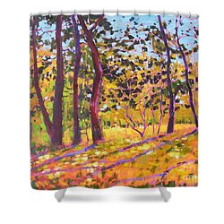 Sunny Place Shower Curtain