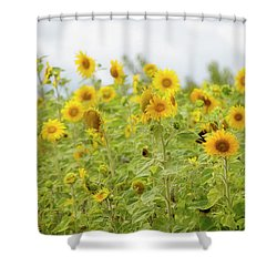 Shower Curtain featuring the photograph Sunny Roadside by Rebecca Cozart