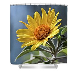 Shower Curtain featuring the photograph Sunny Side Up  by Saija Lehtonen