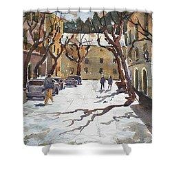 Sunny Street, Valledemossa Shower Curtain