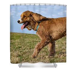 Sunny Stroll Shower Curtain