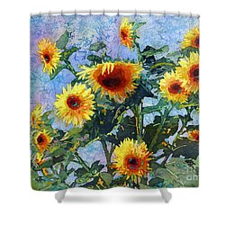 Shower Curtain featuring the painting Sunny Sundance by Hailey E Herrera