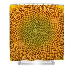 Sunny Swirl Shower Curtain