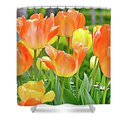 Shower Curtain featuring the photograph Sunny Tulips by David Lawson