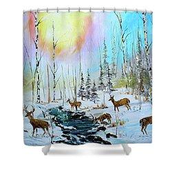 Sunny Winter Shower Curtain