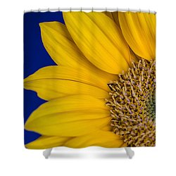 Shower Curtain featuring the photograph Sunnyside by Julie Andel