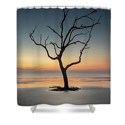 Sunrise And A Driftwood Tree Shower Curtain