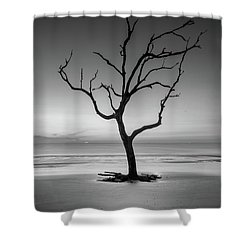 Sunrise And A Driftwood Tree In Black And White Shower Curtain