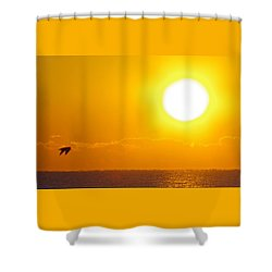 Sunrise And Bird Shower Curtain
