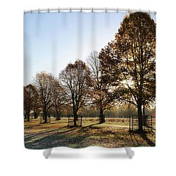 Sunrise And Long Shadows Shower Curtain