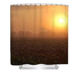 Sunrise And The Cotton Field Shower Curtain