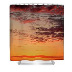 Sunrise At Treasure Island Shower Curtain