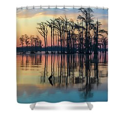 Shower Curtain featuring the photograph Sunrise, Bald Cypress Of Nc  by Cindy Lark Hartman