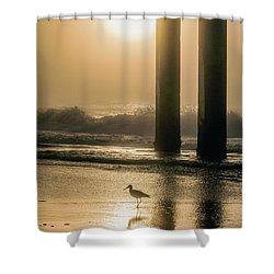 Shower Curtain featuring the photograph Sunrise Bird At Beach  by John McGraw