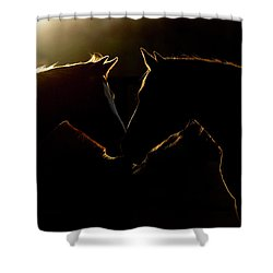 Shower Curtain featuring the digital art Sunrise Companions by Nicole Wilde