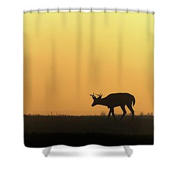Sunrise Deer Shower Curtain