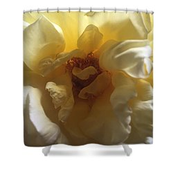 Sunrise Flower Shower Curtain