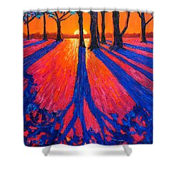 Sunrise In Glory - Long Shadows Of Trees At Dawn Shower Curtain by Ana Maria Edulescu