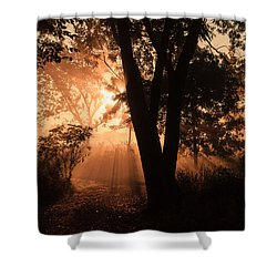Sunrise In The Marsh 3 Shower Curtain