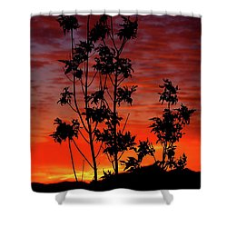 Sunrise Magic Shower Curtain