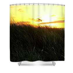 Sunrise  Over Sand Dunes Shower Curtain