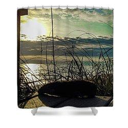 Sunrise Sea Shells Shower Curtain