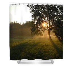 Sunrise Shadows Through Fog Shower Curtain