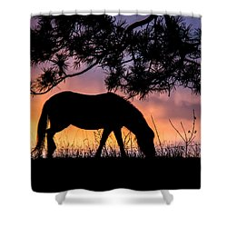 Sunrise Silhouette Shower Curtain