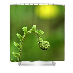 Sunrise Spiral Fern Shower Curtain