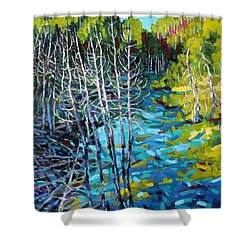 Sunrise Swamp Shower Curtain