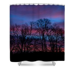Sunrise Through Barren Trees Shower Curtain
