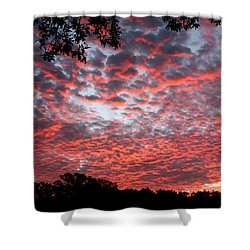 Sunrise Through The Trees Shower Curtain by Sheila Brown